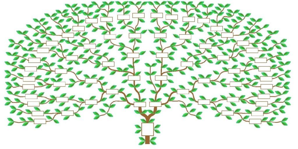 arbre6G