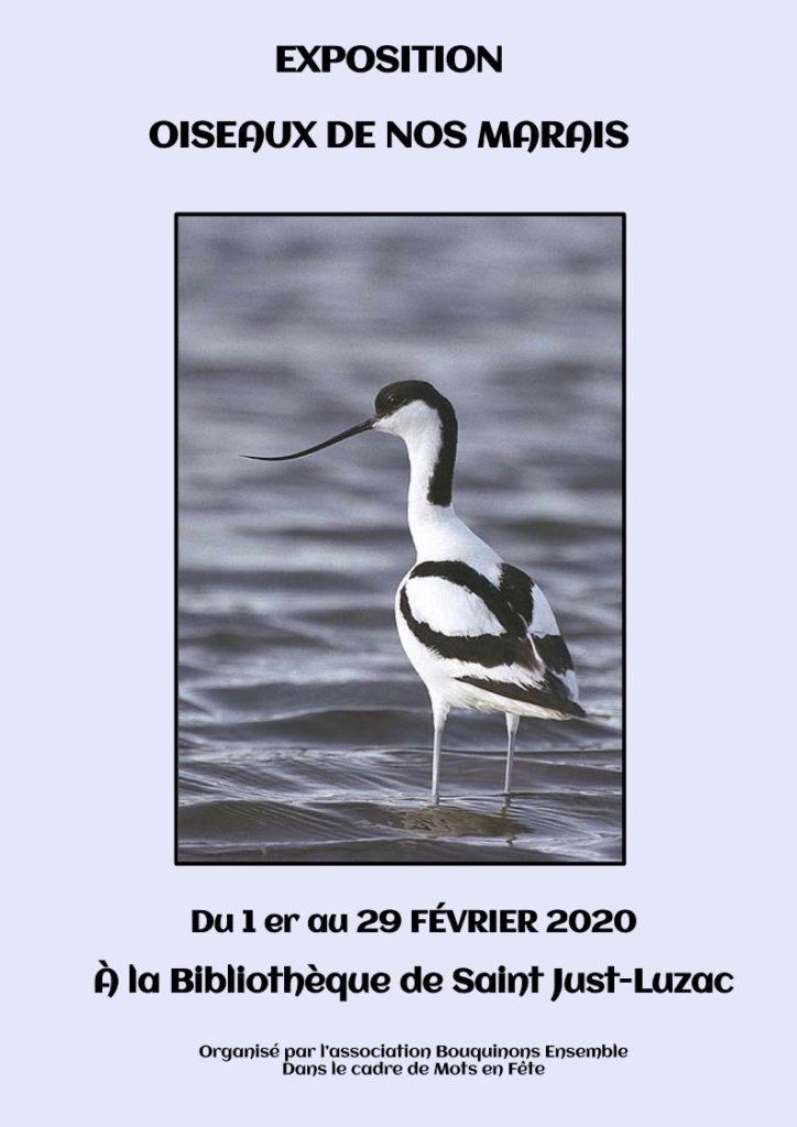 affiche oiseaux de nos marais